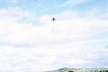 badger-kites